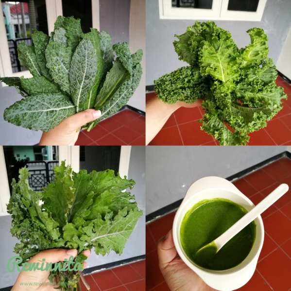 Satu genggam sayur kale, bisa untuk 3 - 4 kali makan.